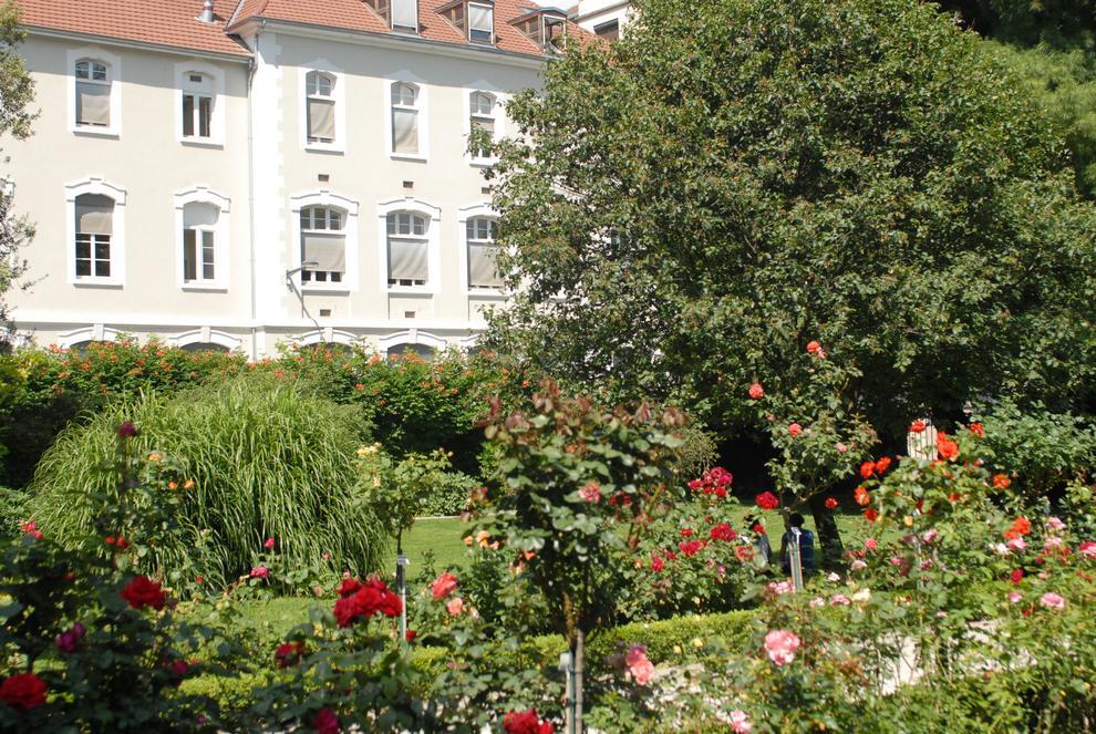Jardin des plantes - Pharmacie du jardin des plantes ...